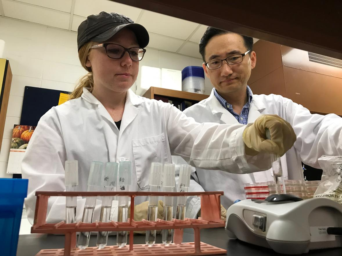 Emily Lehmann works with Assistant Professor Taejo Kim in a food science lab at UW-Stout.
