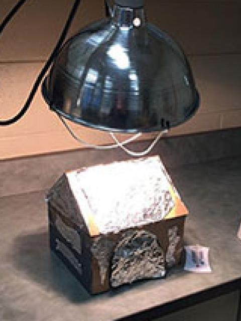 Cool Puppy Doghouse prototype under heat lamp.